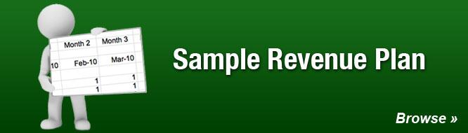 Sample Revenue Plan