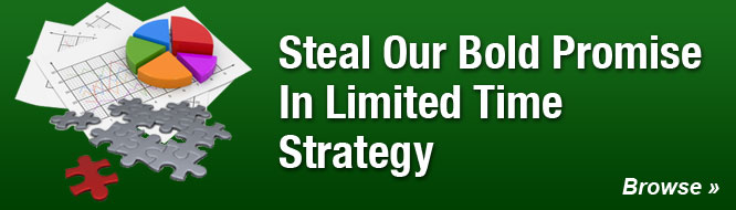 Steal Our Bold Promise In Limited Time Strategy