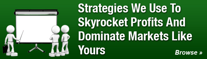Strategies We Use To Skyrocket Profits And Dominate Markets Like Yours